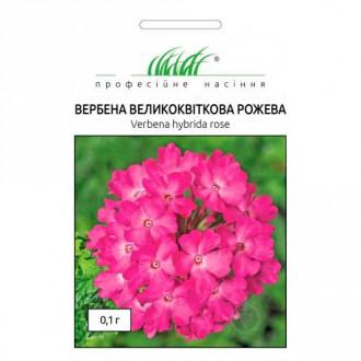 Вербена рожева Професійне насіння зображення 8