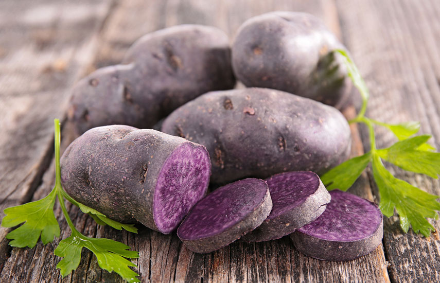 фиолетовая картошка польза как вырастить