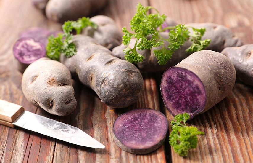 фиолетовая картошка выращивание и польза