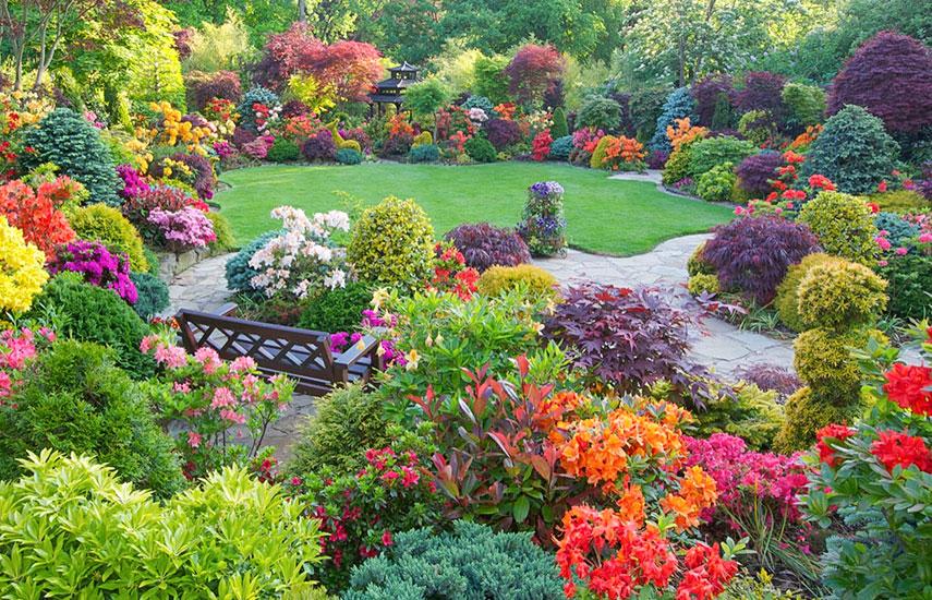 Як скласти правильний план саду