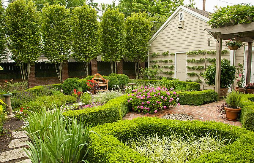як поєднувати рослини в саду