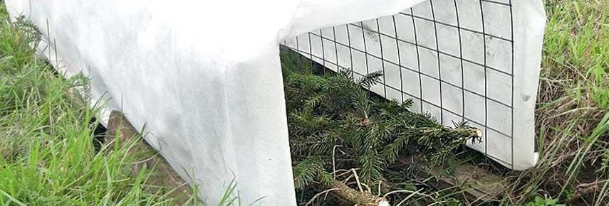 укрытие винограда на зиму нетканным материалом