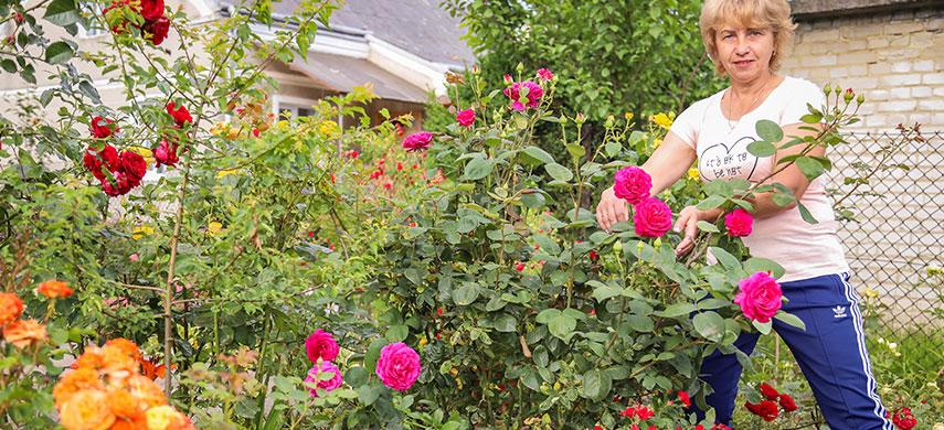 Садове королівство: в гостях у покупця Світлани Грицак 2