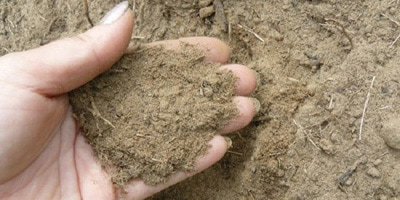 Плюси піщаного ґрунту