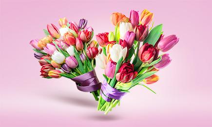 ШОУ тюльпанів! | Дім і Сад