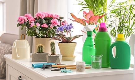 Удобрения для растений   Дом и Сад