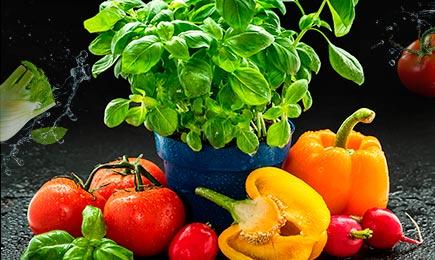Урожай на вікні   Дім і Сад