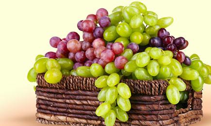 Виноградний бум   Дім і Сад