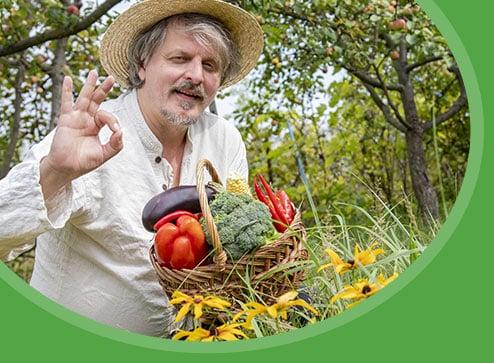 Каталог - -50% на насіння овочів та квітів - Дім і Сад Україна