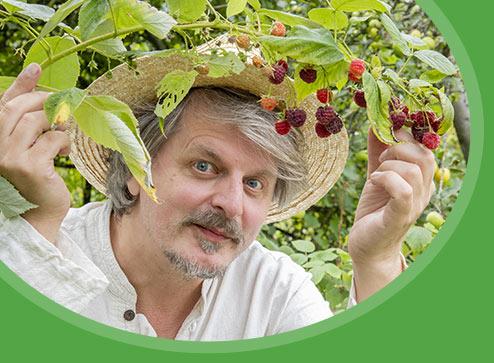 Каталог - -90% на ароматну полуницю - Дім і Сад Україна